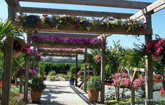 40 Pergola Style Ideas Turn Your Backyard Into A Peaceful Refuge