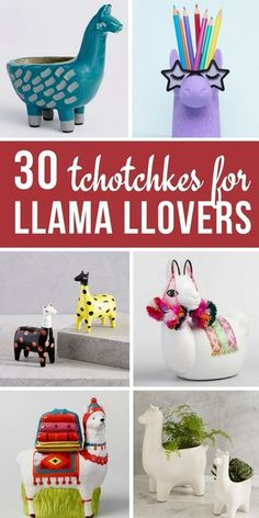 Llamas make me smile and I know I'm not the only one! Here's 30 tchotchkes and trinkets for my fellow llama llovers Alpacas, Cute Llama, Funny Llama, Celestine, Llama Decor, Llama Arts, Inka, Llama Alpaca, Classroom Decor