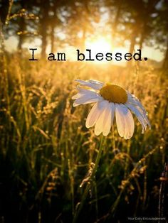 ♥ I am so BLESSED…with the Gift of all of you ...