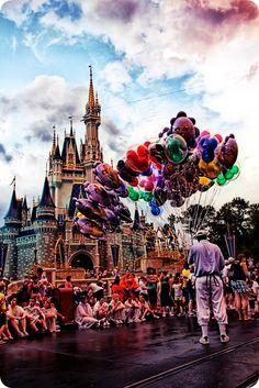 A summer trip to DisneyWorld. COMPLETE!