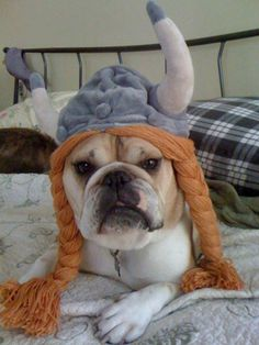 ♥ Viking Princess (emphasis on Princess) ♥ from Baggy Bulldogs HAHA