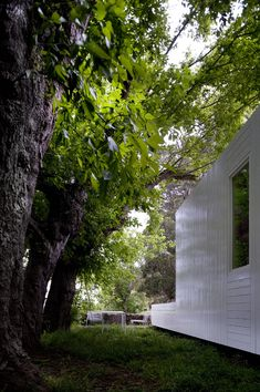 Gallery Of Treehouse Riga / Appleton U0026 Domingos   5 | Riga, Treehouse And  Architecture