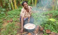 Risultati immagini per cultivation of beans in Africa