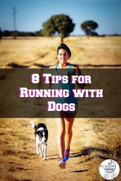 Running with your dog can be fun for both of you! Here are 8 tips to help keep your furry friend safe in the summer heat while you both are working on your fitness!