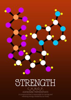 Ingredients of life : Strength  Illustrations of Chemical compounds by Avkari Alon