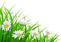 Framed Wallpaper, New Wallpaper, Poster Background Design, Background Images, Flower Frame, Flower Art, Shape Templates, Kids Vector, Flower Phone Wallpaper