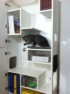 Katze: Kratzartikel - Katzenmöbel FURcat No. 2 - ein Designerstück von kratzmoebel bei DaWanda