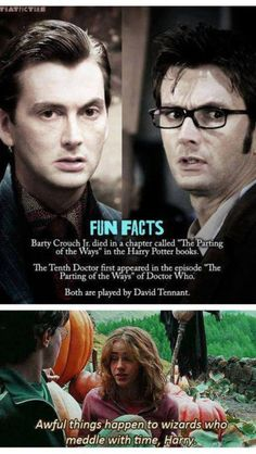 Doctor Who/Harry Potter. MAYBE THE DOCTOR IS BARTY CROUCH JR!!! Well, I'm going too far.