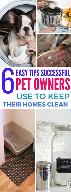 6 Clever Tricks Pet Owners Use To Keep Their Homes Clean - Find the BEST cleaning tips and tricks if you own a pet. I wish I found these a long time ago! MUST READ.