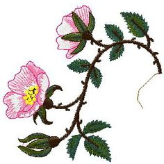 Floral Design 008  Nanees
