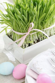Cute idea for the #Easter table — growinga small patch of wheat grass.