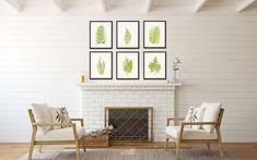 Vintage Ferns Botanical Print Set - Printed on archival canvas - Makes a charming vintage display - Multiple Sizes - Free US Shipping – Belle Botanica