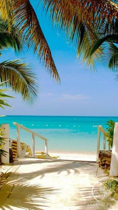 Best Online Travel Deals finds cheap vacation bargains at exotic vacation destinations. We specialize in lavish resorts, hotels and fun cruises for adults. Most Beautiful Beaches, Beautiful Places, Beautiful Islands, Dive Resort, Tropical Beaches, Florida Beaches, Tropical Vacations, Florida Keys, Beach Wallpaper