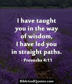 I have taught you in the way of wisdom, I have led you in straight paths. - Proverbs 4:11