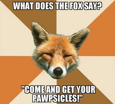 Aww! Nick Wilde from Zootopia would say that ;)