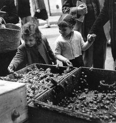 Robert Doisneau - Les escargots, Paris, 1951.
