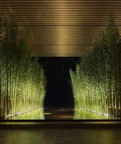 View a variety of garden lighting ideas along with products to get the look. outdoor lighting ideas, backyard lighting ideas, frontyard lighting ideas, diy lighting ideas, best for your garden and home Backyard Lighting, Outdoor Lighting, Lighting Ideas, Pathway Lighting, Water Lighting, Landscape Architecture, Architecture Design, Terrasse Design, Landscape Lighting Design