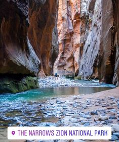 Narrows Zion National Park, Hiking The Narrows, National Parks, The Narrows Zion, Zion Adventure Company, Fun Adventure, Top Places To Travel, Snow Canyon State Park, St George Utah