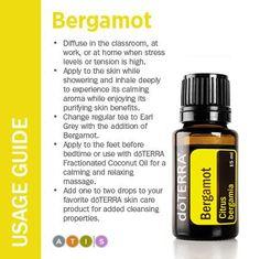 bergamot usage guide                                                                                                                                                      More