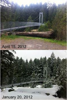 Top Bridge Crossing in Two Seasons #parksville #vancouverisland #explorebc #canada