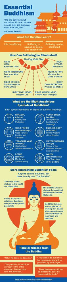 Amazing Buddhism infographic packed with mind-blowing facts, little-known history, surprising statistics, and much more