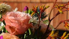 In der Blütenwerkstatt in Reith bei Kitzbühel gibt es blühendes Leben in allen Varianten – auch nach Hause geliefert. Inspiration, Plants, Language Of Flowers, Natural Materials, Workshop, Art Pieces, Life, Lawn And Garden, Dekoration