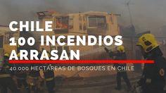 Chile más de 100 incendios arrasan con casi 40.000 hectáreas de bosques ...