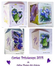 Cartes doubles personnalisables avec des fleurs de violettes de Céline Photos Art Nature