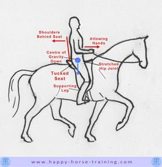 Sitting on a horse in balance may seem a simple matter, but in fact the position that feels balanced initially is not necessarily the best way to connect with the horse's movement