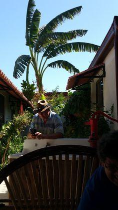 Ahora estamos trabajando en nuestro jardín. ¡Únete!      Right now we're working on our garden. Join us!      #VillaAstoria #nature #beautyofnature #travel #hostellife #explore #tropic #lifeinthetropics #digitalnomad #goodvibes #Panama #AstoriaAnton