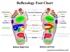 Reflexology Foot Chart - learn how you can use this ancient practice to relieve digestive, head and PMS woes.