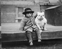 A child is seen with his arm around his friendly white bulldog at a show in…