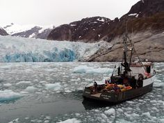 Oceanographer Dave Sutherland of the University of Oregon and colleagues studied the underwater melting of the LeConte Glacier, which lies south of Juneau in Alaska. Alaska, Fonte Des Glaciers, Ocean Properties, Drake Passage, Glaciers Melting, Image 3d, Ocean Current, Ice Sheet, Time Lapse Photography