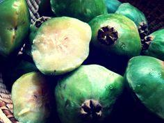 Com destaque para produtos baseados no fruto cambuci, evento permite que visitantes degustem salgados, doces e bebidas derivados do alimento.