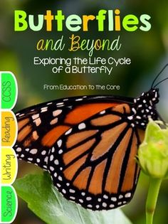 Butterfly Life Cycle: Butterfly Life Cycle Close Read UnitBundle and Save!Get the Spring BundleThank you for taking a look at this unit! If you love teaching about Butterflies and the Butterfly Life Cycle you will love this Unit! If you have any questions about this Unit, please ask before downloading.