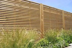 fence panels garden fence panels jacksons fencing 33 of 20 Great Privacy Trellis Panels 2019 Fence Panels Uk, Trellis Panels, Privacy Trellis, Contemporary Fencing, Contemporary Garden Design, Modern Design, Diy Videos, Garden Design Ideas Videos, Garden Ideas