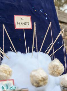 """Firefly (Space Cowboy) and Serenity 10th Birthday Party 