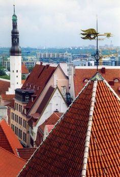 I tetti di Tallinn // Tallinn's roofs — Estonia