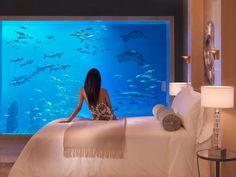 Underwater room at Atlantis the Palm, Dubai