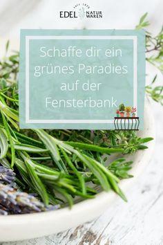 """""""Urban Gardening"""" heißt das Zauberwort. Mit etwas Geduld und einem grünen Daumen kannst du dir auch in einer Stadtwohnung Gemüse auf dem Balkon anbauen. Wer keinen Balkon hat nimmt die Fensterbank als Minigarten. Kräuter auf der Fensterbank gehen fast immer und sind dabei nicht nur schön, sondern auch lecker! Basilikum & Co. brauchen lediglich einen großen Topf, um sich wohl zu fühlen. Mehr zum Thema Gärtnern in der Stadtwohnung liest du hier. Mikro Garden, Gärtnern Balkon #edel-naturwaren.de Green Beans, Herbs, Gardening, Vegetables, Food, Edible Plants, Large Backyard, Sustainable Gifts, Patience"""