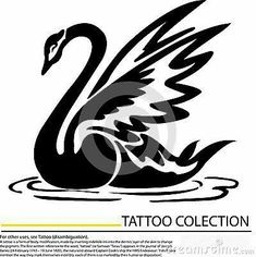Quilling Patterns, Stencil Patterns, Stencil Designs, Black Swan Tattoo, Black Dragon Tattoo, Vogel Silhouette, Bird Silhouette, Simple Line Drawings, Amazing Drawings