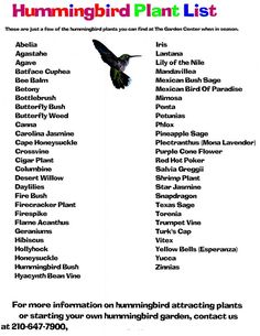 Hummingbird garden list... this is coming out of Texas :)