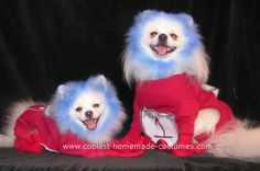 Thing1 and Thing 2 Costume