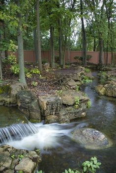 The waterfall and stream in this backyard slows in spots, and speeds up in other places ... just like you would see in nature. www.aquascapeinc.com