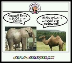 Funny Greek Quotes, Elephant, Jokes, Lol, Happy, Animals, Humor, Animales, Husky Jokes