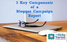 3 Key Components of a Campaign Blogger Report ~ The NicheParent.com