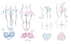 Butt Tutorial by Imoon90.deviantart.com on @DeviantArt. Good once you get past the weirdness.