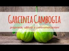 Maximum strength garcinia cambogia xt