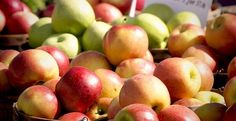 ペクチン・カリウム・ポリフェノールが豊富に含まれていて、栄養価が高く、美容・健康、ダイエットにとても優れた働きを持っています。また、りんごの酸味のもとであるりんご酸とクエン酸は、疲労回復、食欲増進などに効果的です。 #健康、#Food、#料理、#レシピ、#Recipe