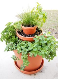 Tiny Herb Tower by This Humble House.  This is the kind of gardening step by step I need!